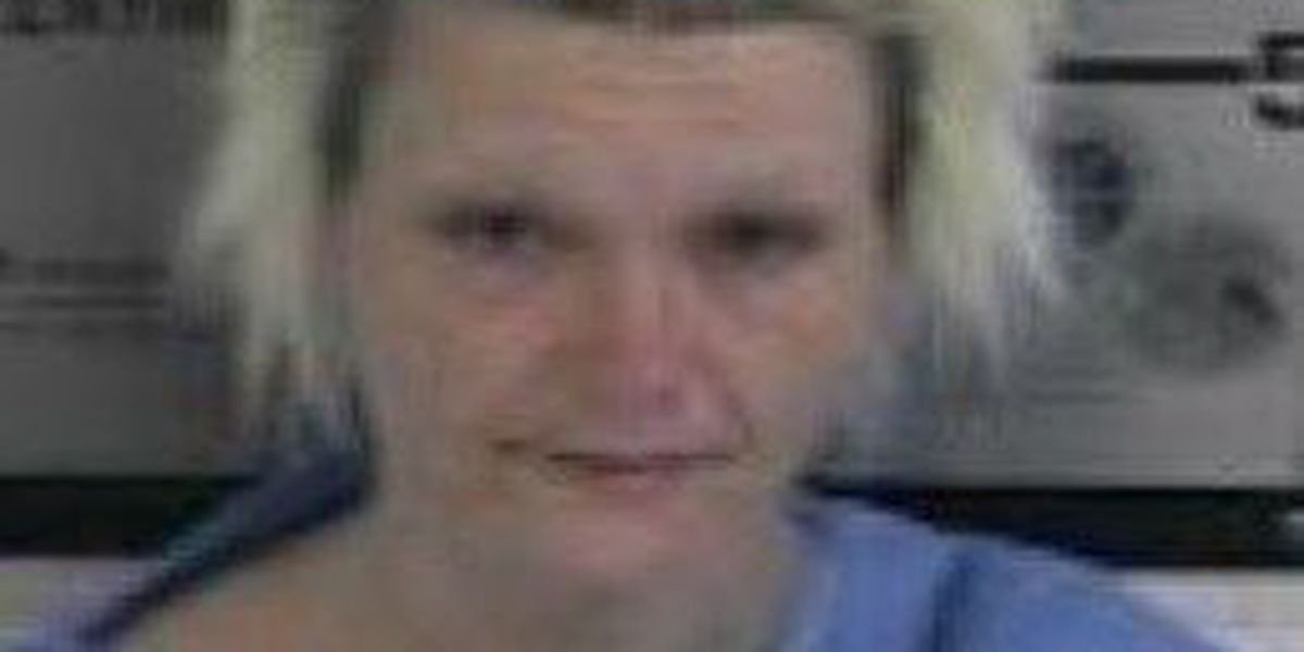 Obion Co. woman charged with setting her home on fire