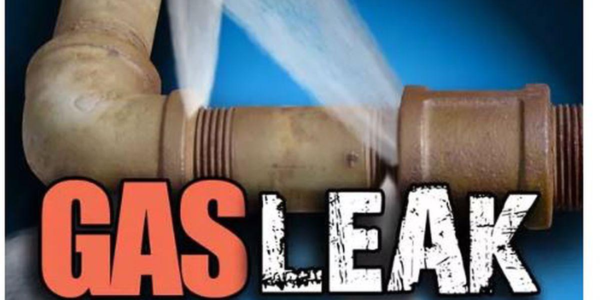 Crews working to repair gas leak in Wayne County, Mo.