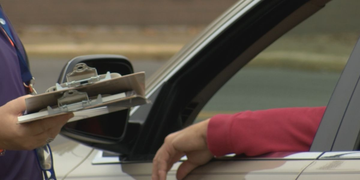 Curbside, absentee voting in Cape Girardeau County