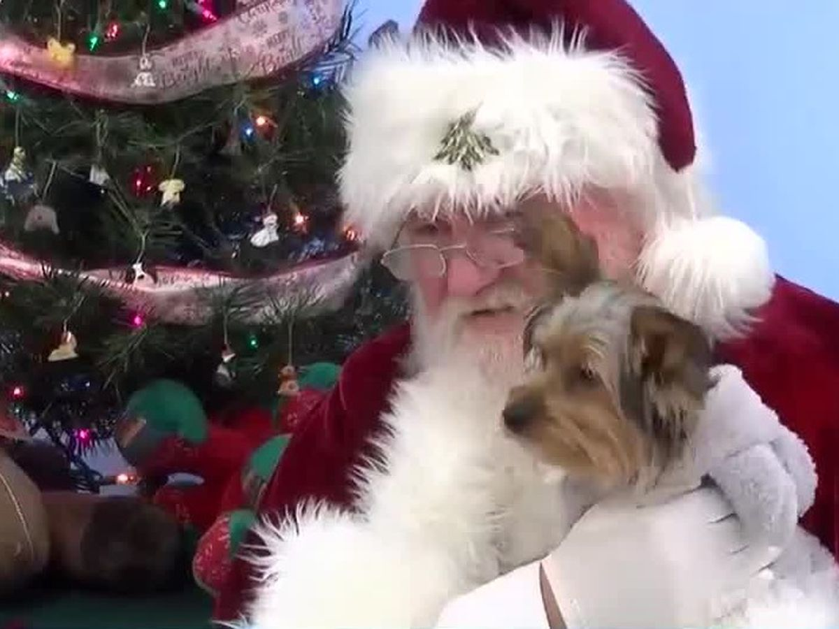 Pets get to meet Santa and Mrs. Claus in Cape Girardeau, MO