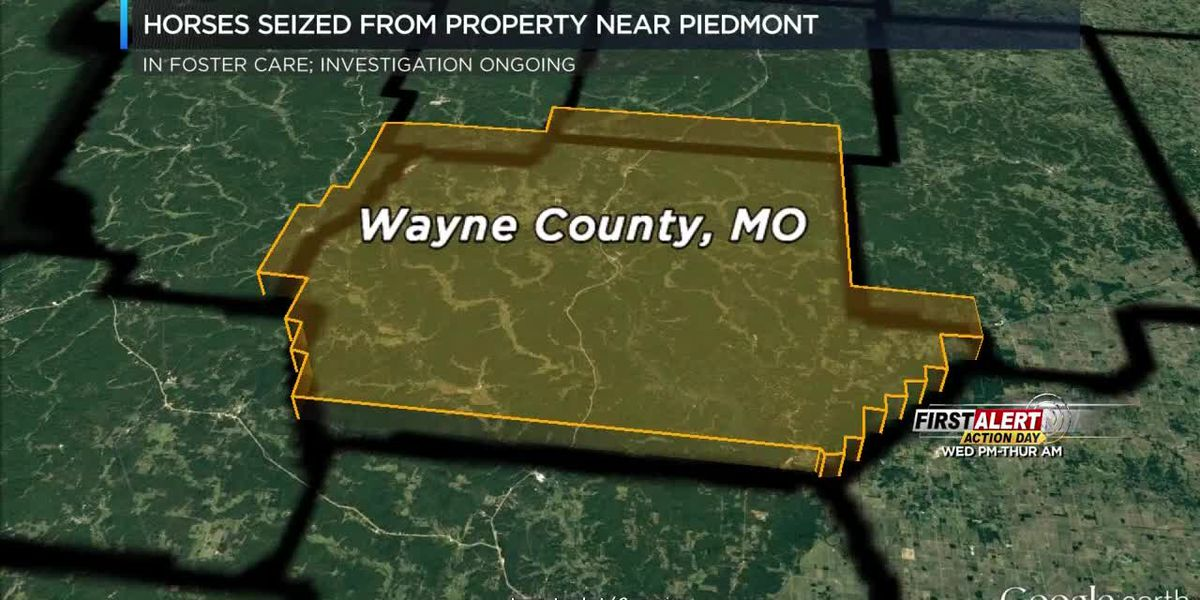 Horse owner in Wayne Co., MO under investigation