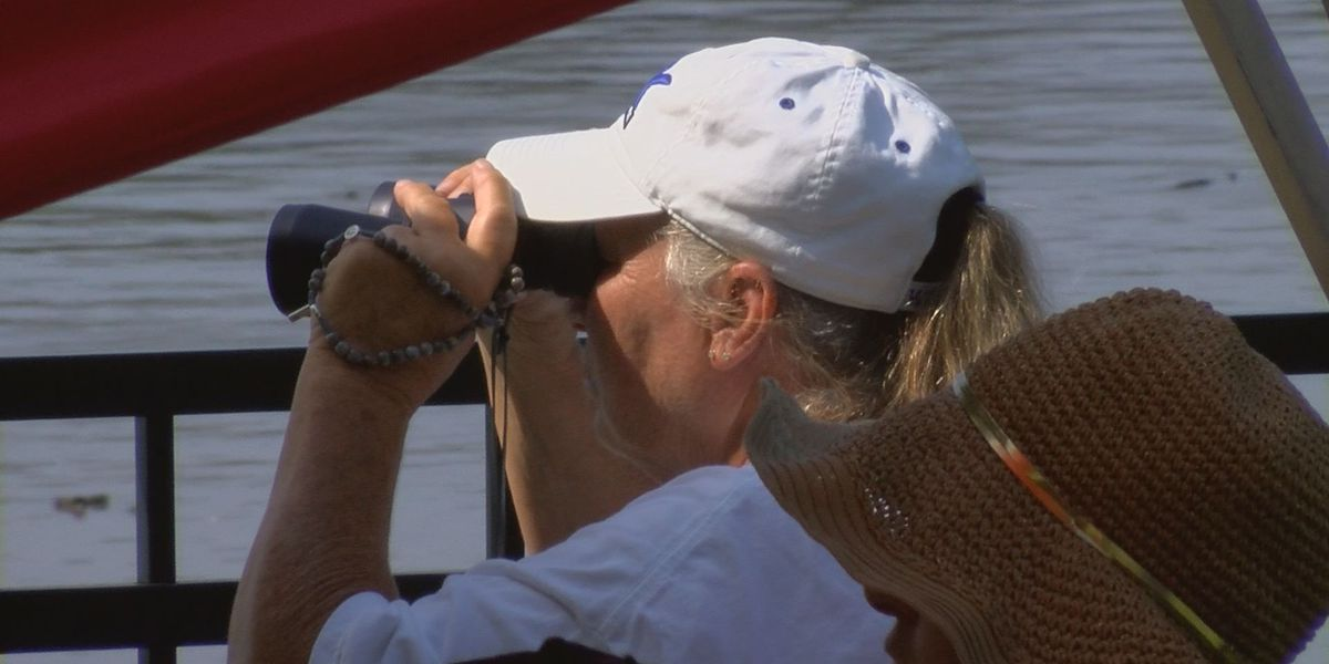 Continuing Coverage: Search for Missing Boater, DNR says getting closer to answers