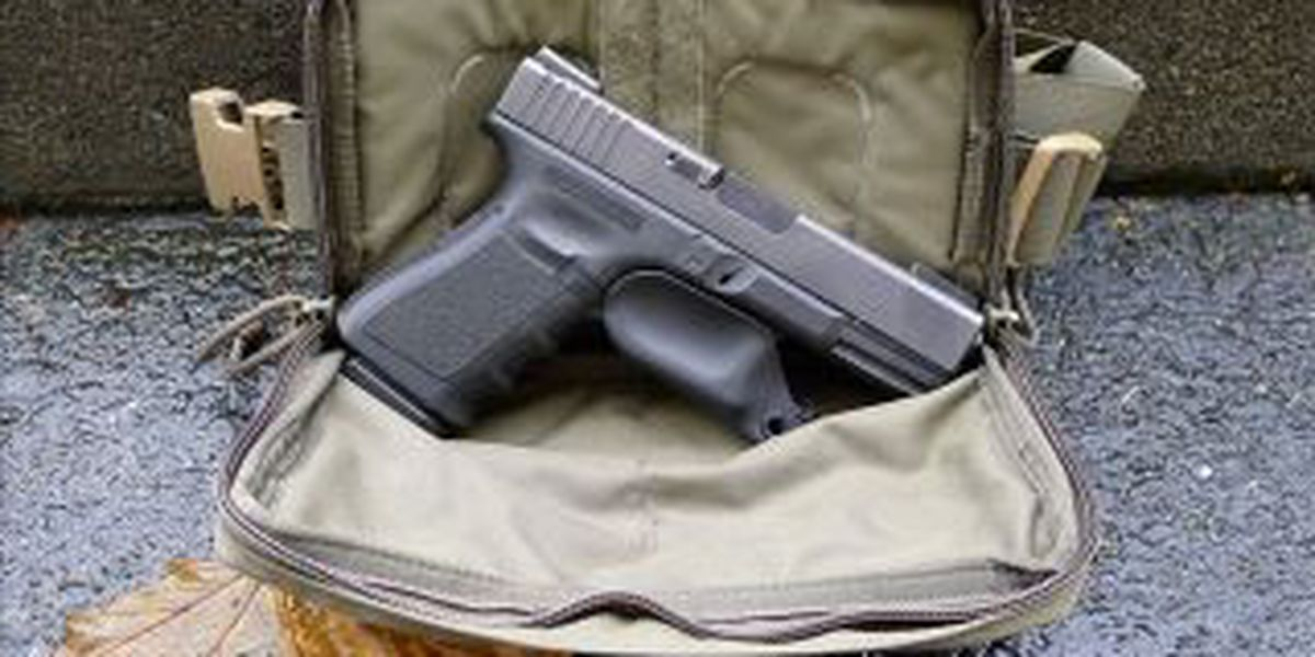 Ill. concealed carry applications to begin Sunday