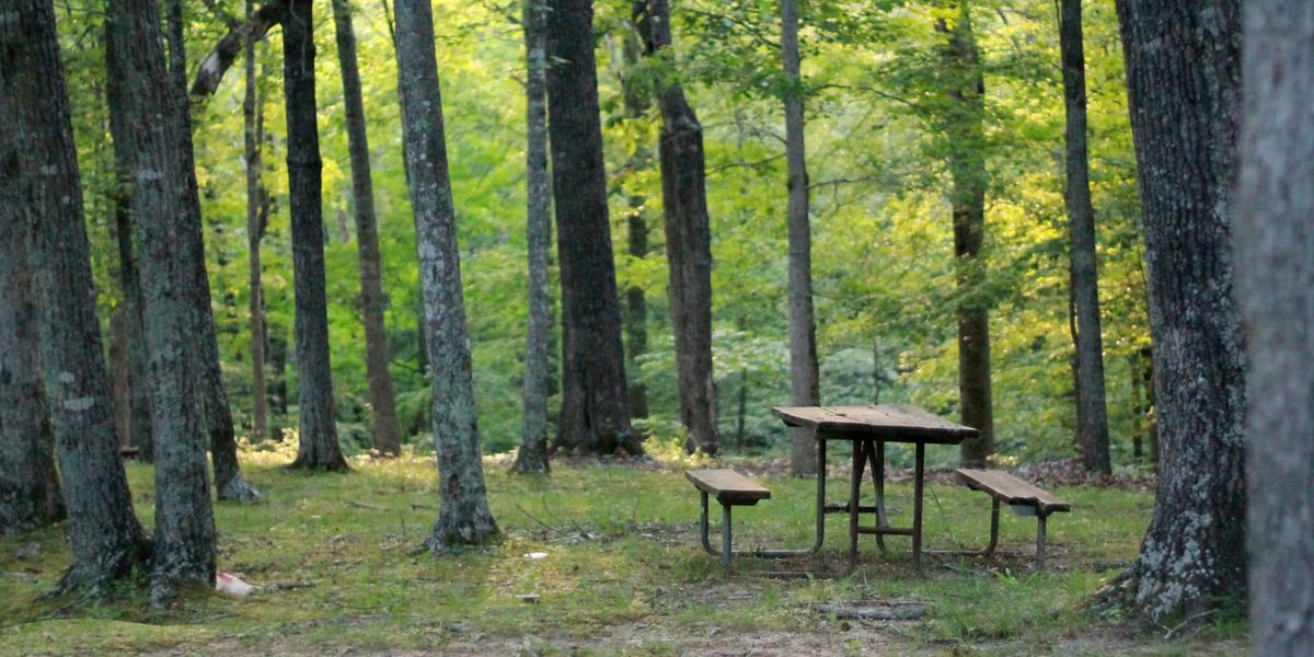 Restroom replacement project to shift to Powder Mill Campground