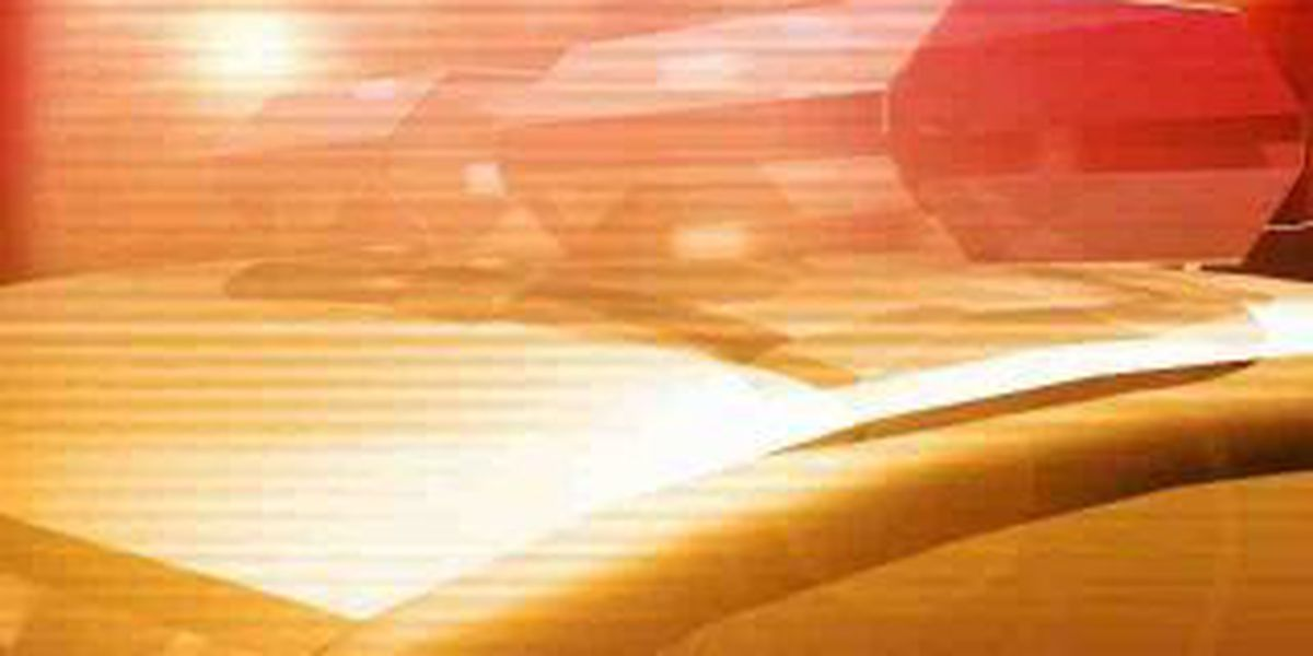Carbondale police investigate beating, robbery