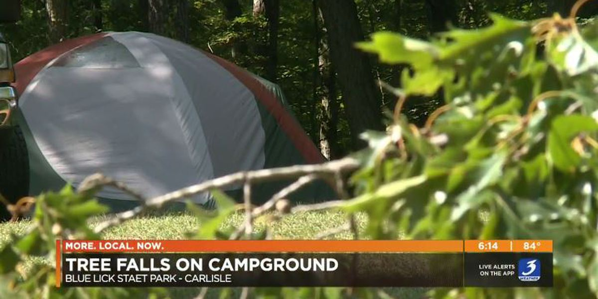 Tree falls on tent at Kentucky park with family inside