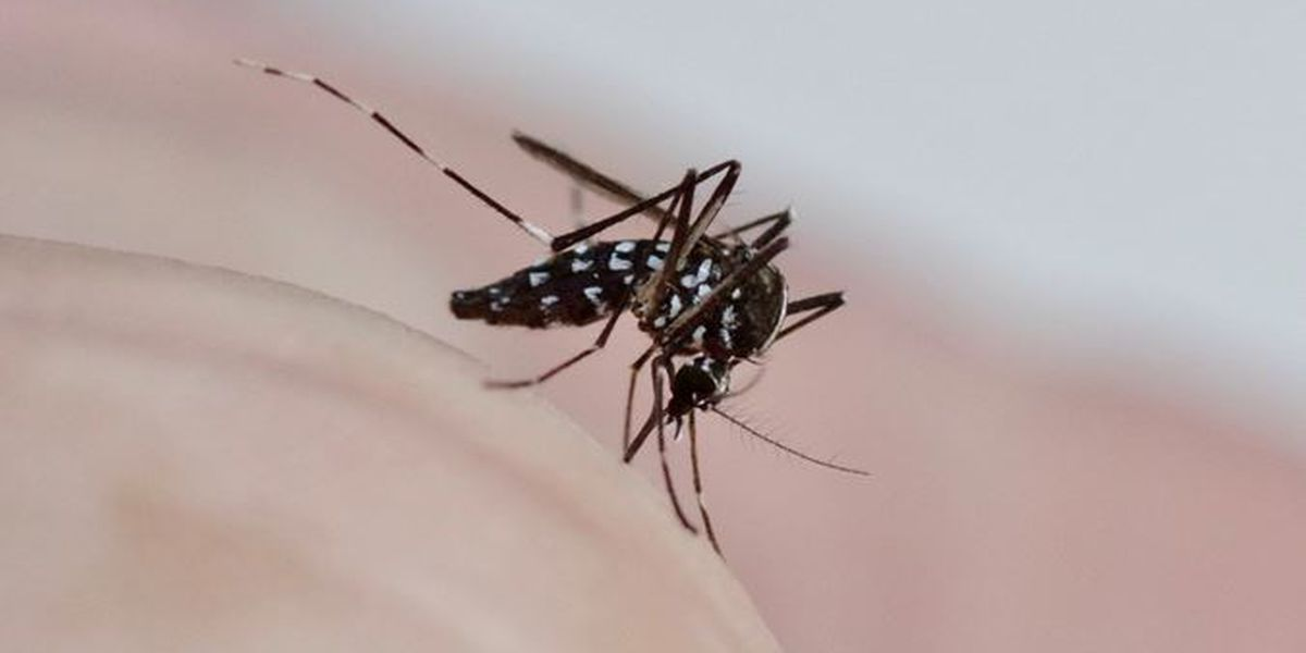 First human case of West Nile Virus in Ill. for 2020