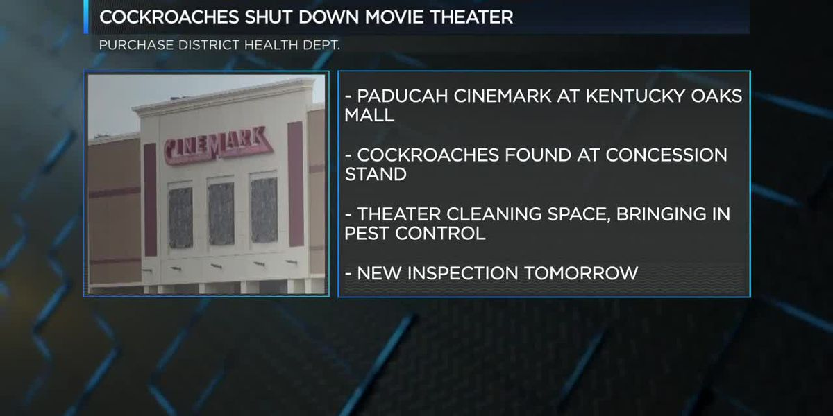 Paducah movie theater concession stand closed after roach infestation