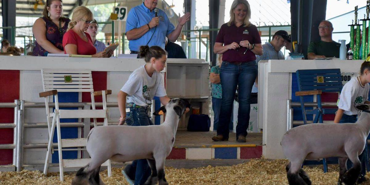Gov. Parson visits Mo. State Fair