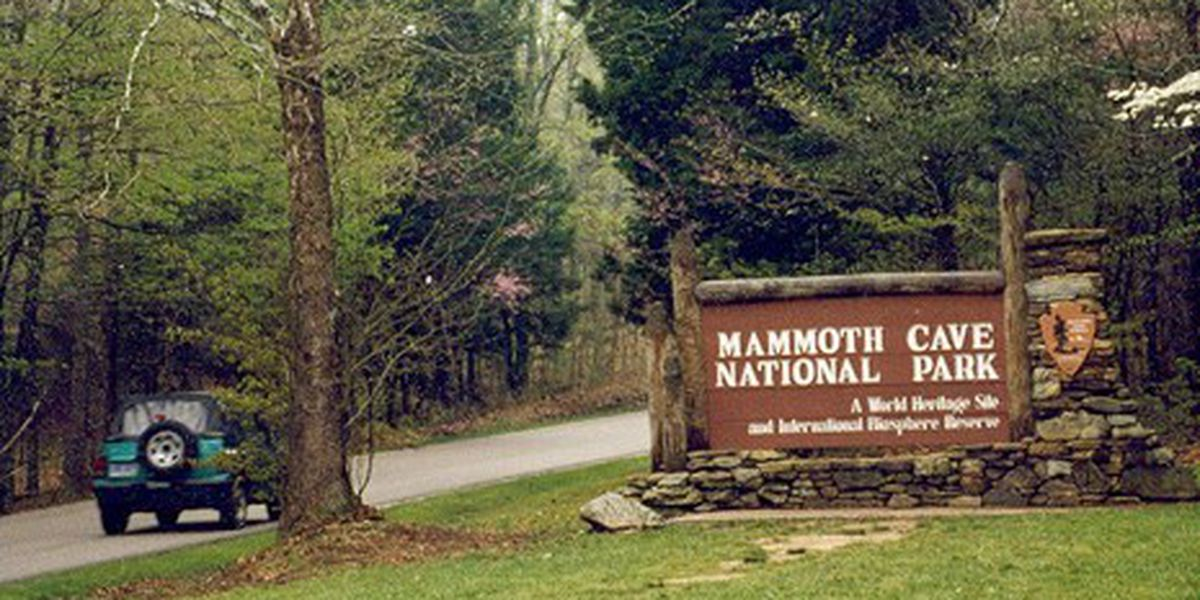 Former Mammoth Cave employee sentenced to prison for theft