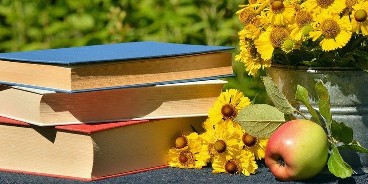 Du Quoin hosting Southern Illinois Reads Book Festival