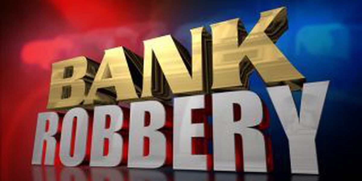 Suspect in custody after bank robbery investigation in Carbondale