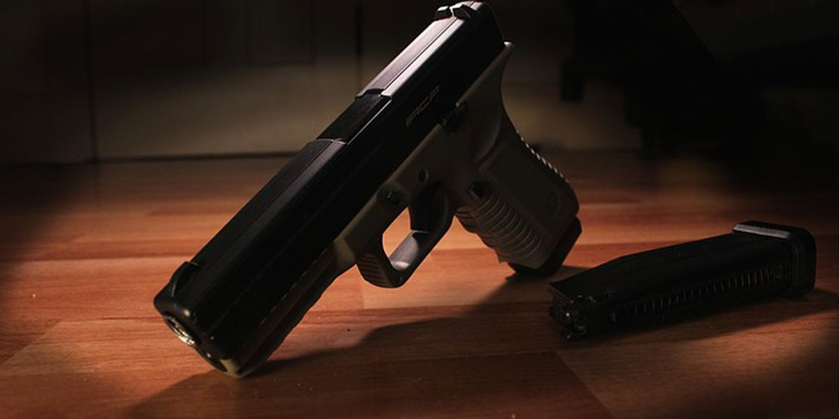 Multiple firearms reported stolen from TN home