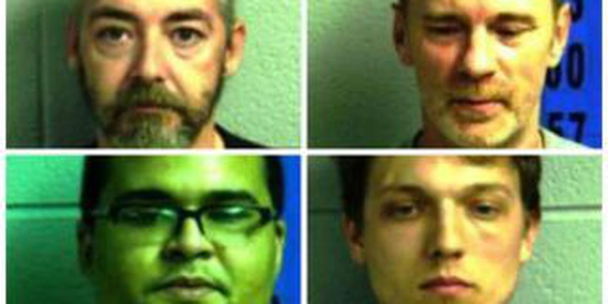 Sheriff: 4 facing felony drug charges after undercover bust