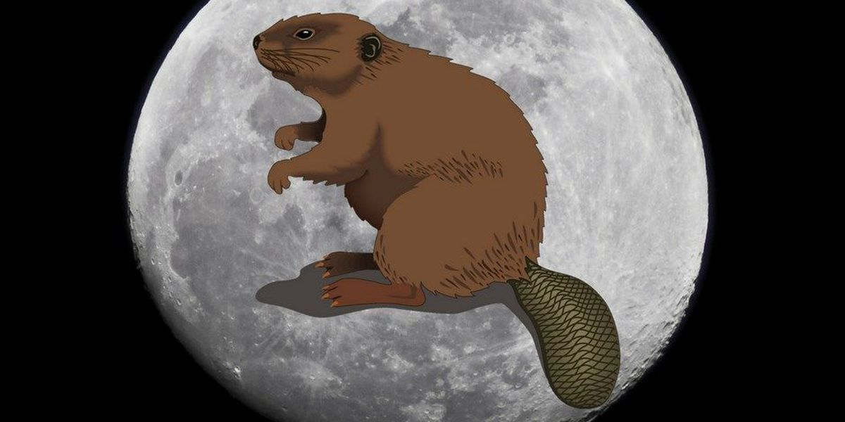 Don't miss the Beaver Moon this weekend