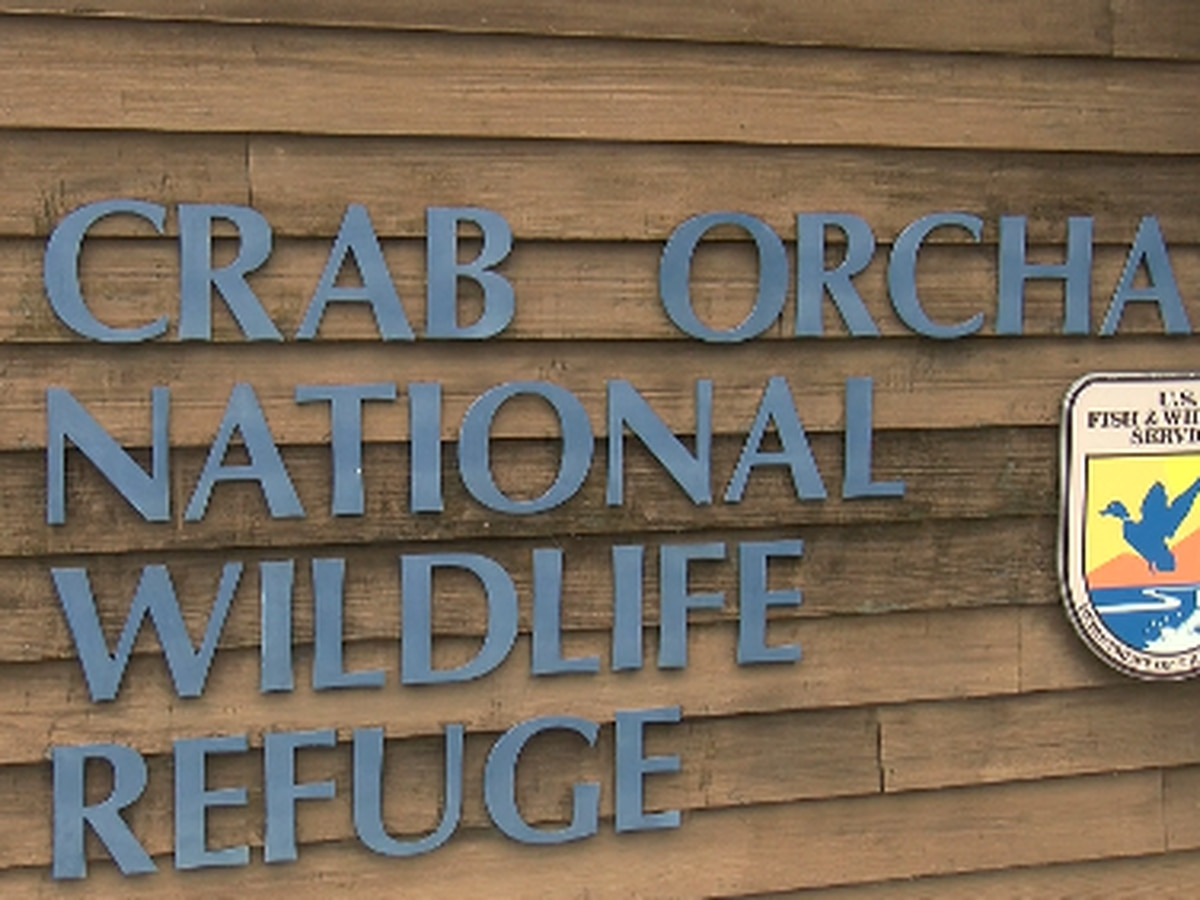 Crab Orchard National Wildlife Refuge proposes updates to hunting and fishing programs