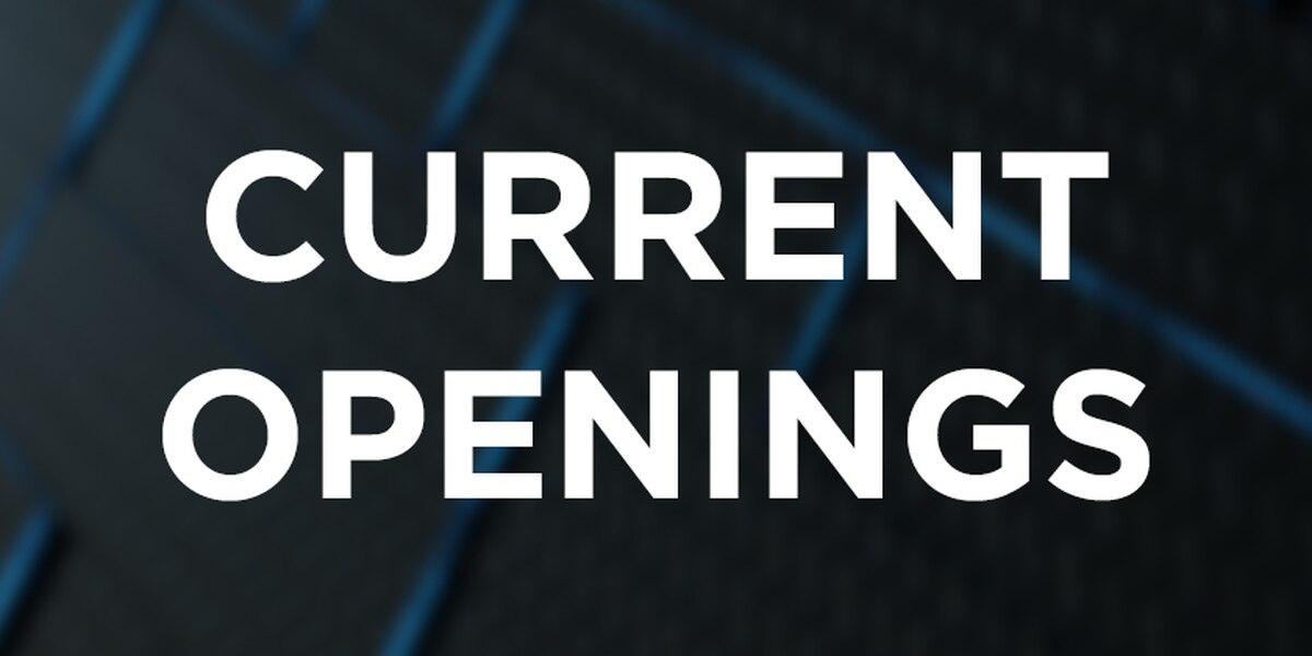 KFVS12 Openings