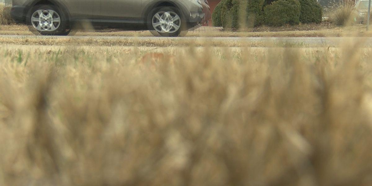 How does marijuana impact you when behind the wheel?