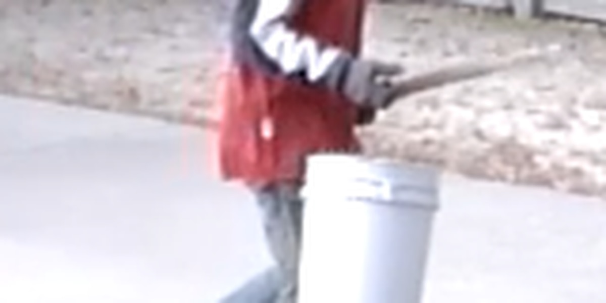 Suspects wanted in Dunklin Co., MO burglary