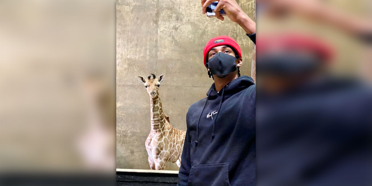 Ja Morant meets 'Ja Raffe' at the Memphis Zoo