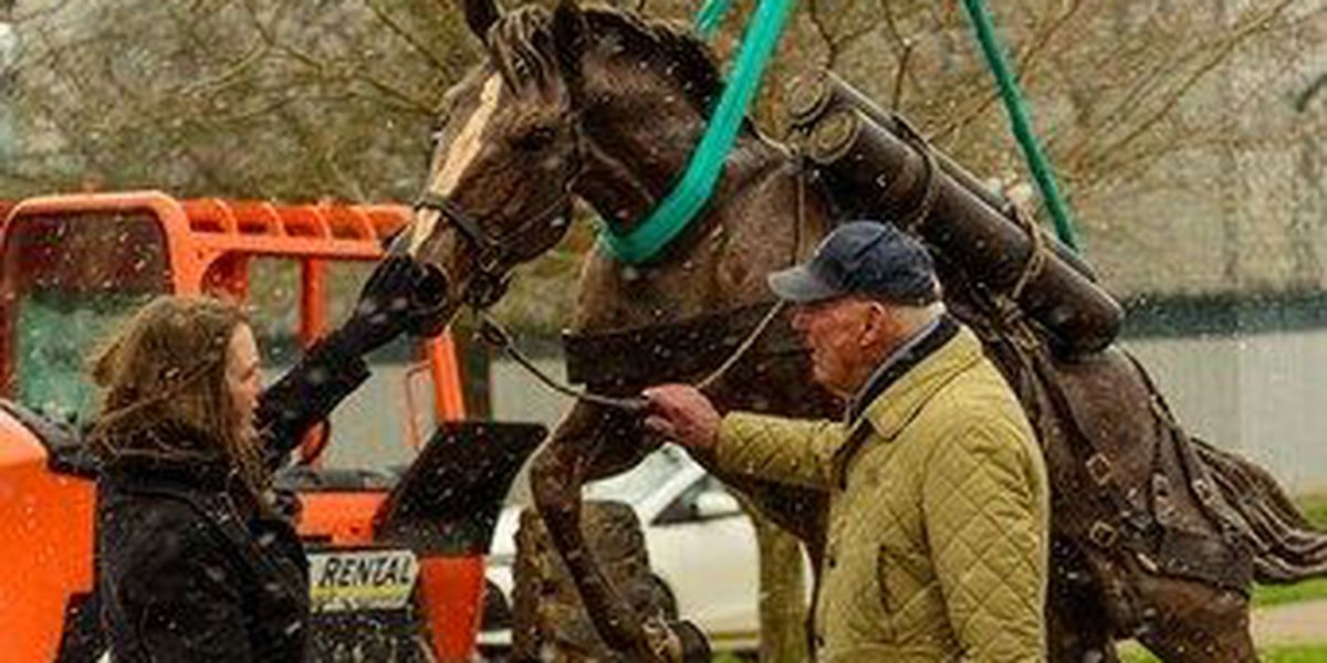 Statue of heroic Korean War horse to be dedicated at KY Horse Park