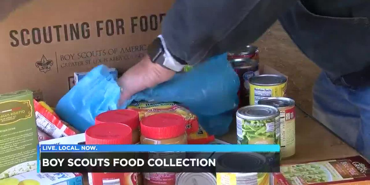Boy Scouts collect food