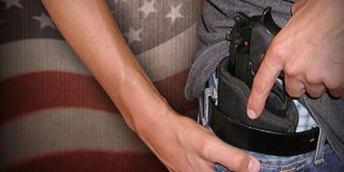 Illinois concealed/carry classes planned for Feb. and March