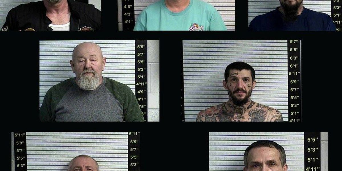7 arrested on felony charges after motorcycle theft in Graves County
