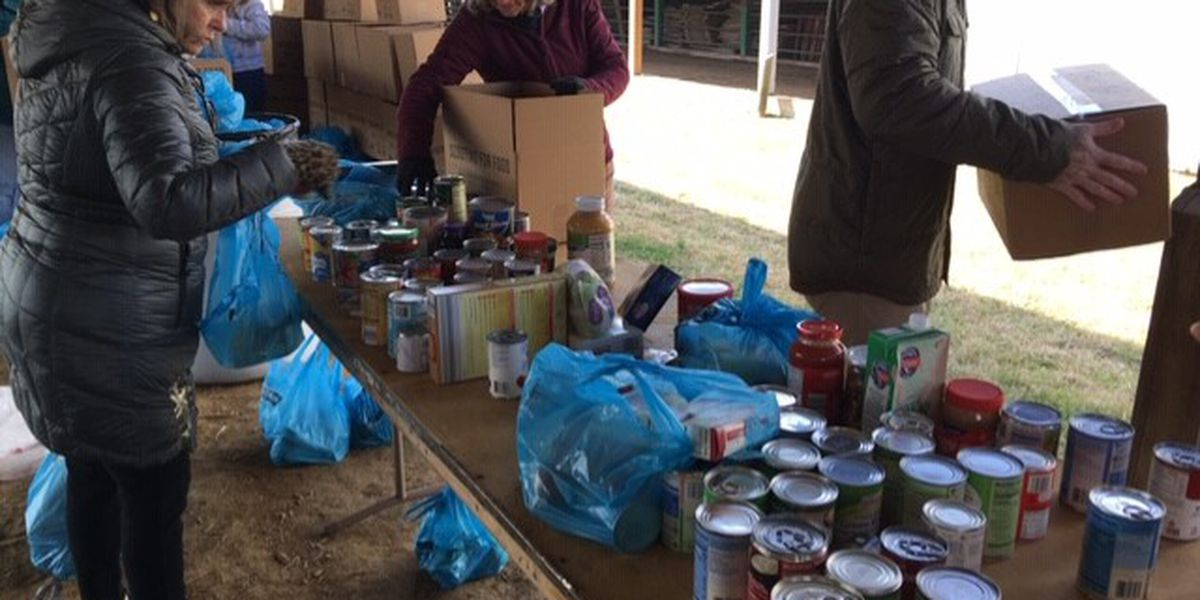 Scouts collect roughly 40,000 food items for area food pantries