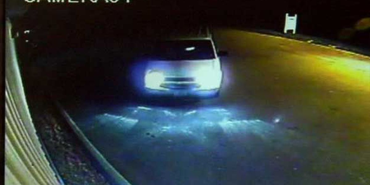 Hit and run crash into business caught on video