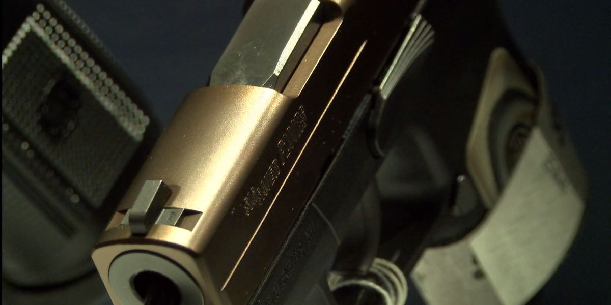 Proposed IL law would remove ban on firearm silencers