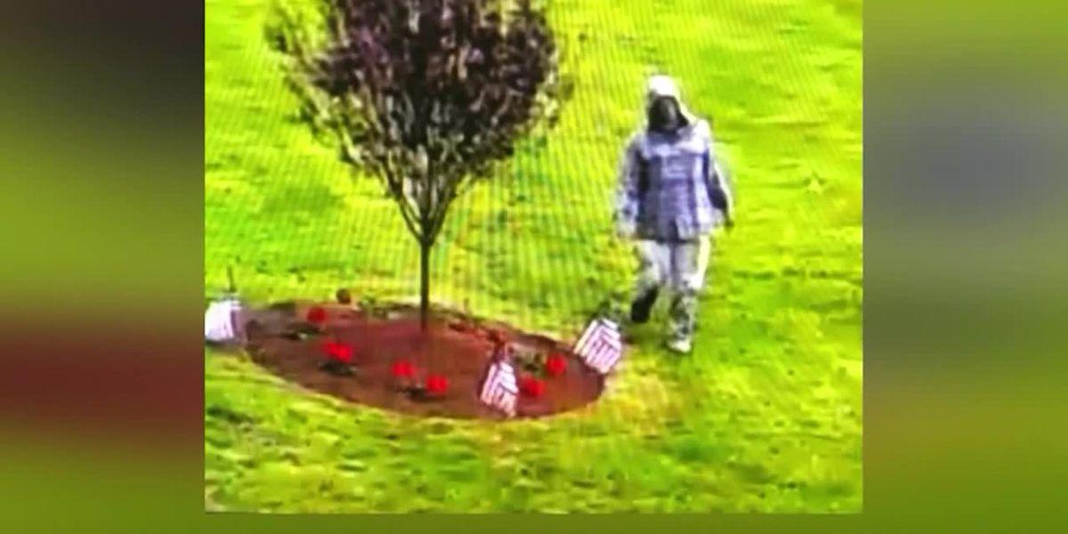 Suspect arrested in vandalism of Vietnam War memorial in Boston