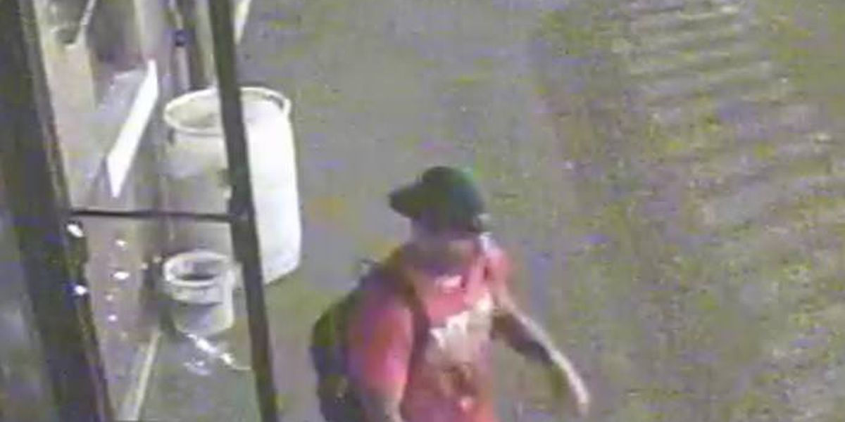 Poplar Bluff police ask for help identifying suspect