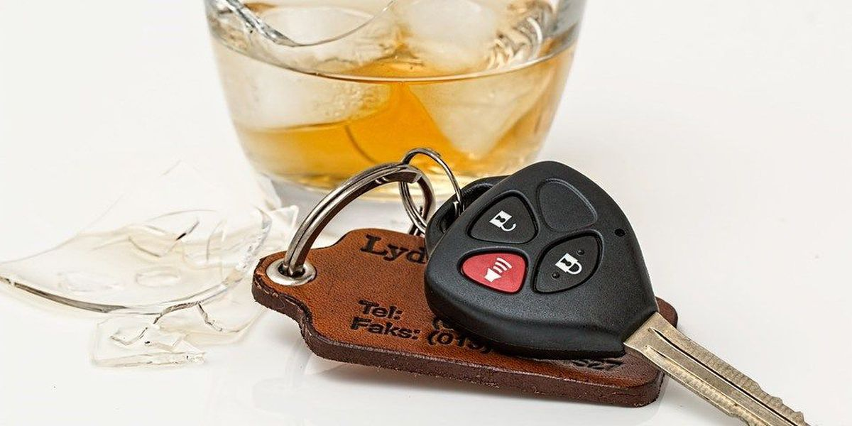 IL Secretary of state warns about holiday drinking and driving