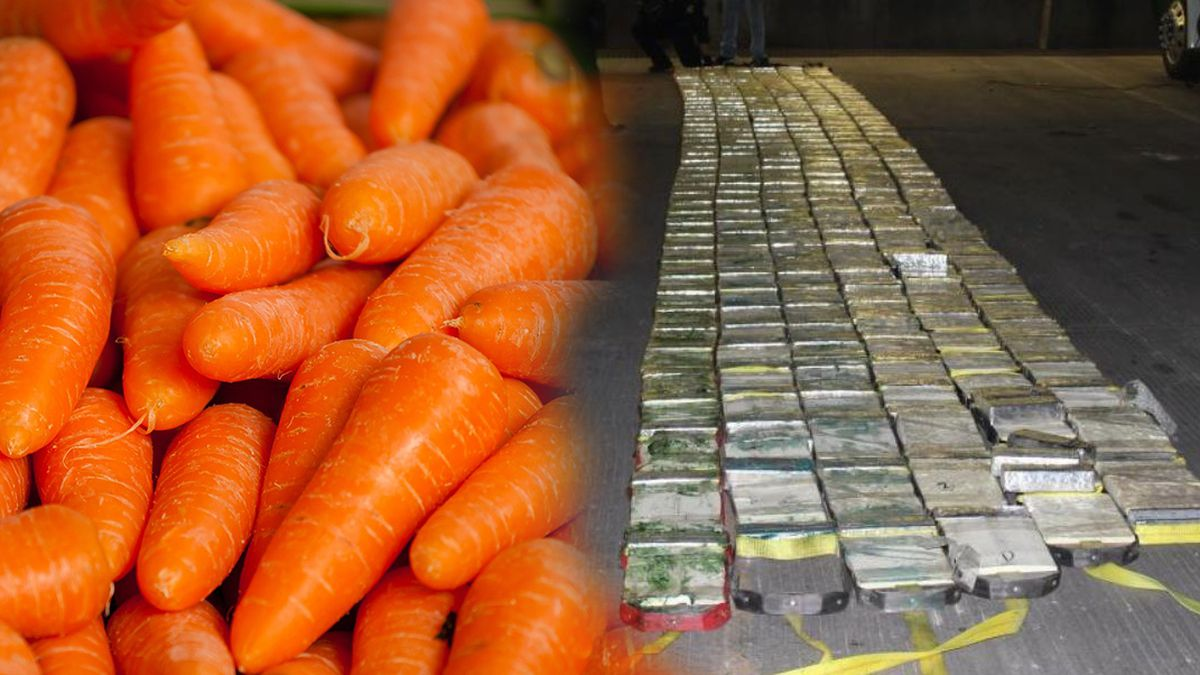 $18.5 million worth of meth found in shipment of fresh carrots at border