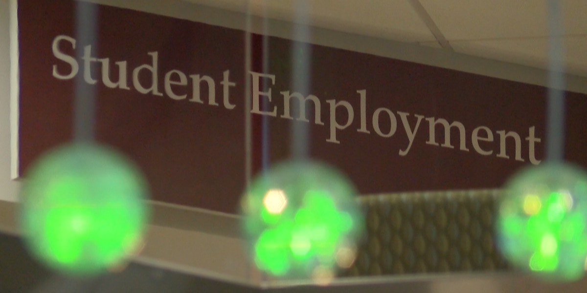 How would a $15/hr minimum wage hike impact SIUC?