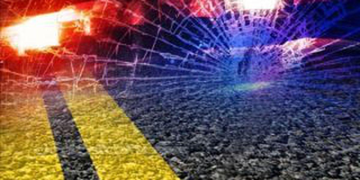 Police: Charleston man injured in DWI crash trying to flee traffic stop