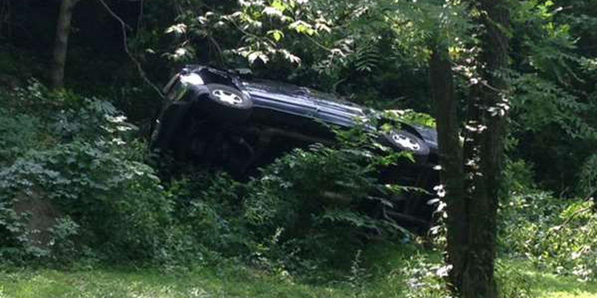 Stolen vehicle found off of bluff in Alto Pass