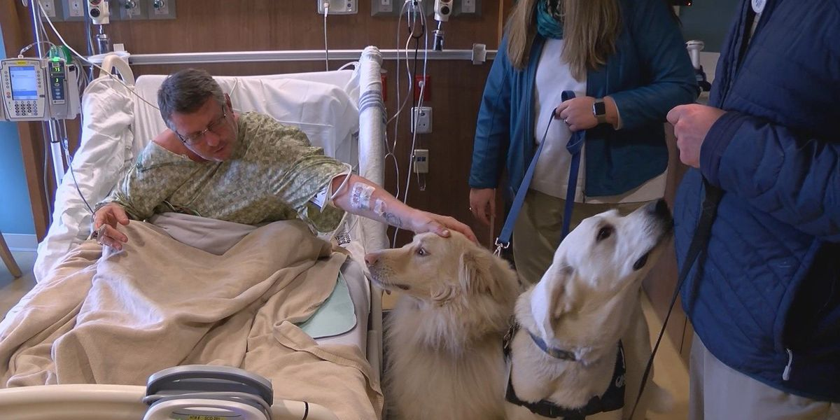 Mt. Vernon hospital unleashing furry friends to help patients