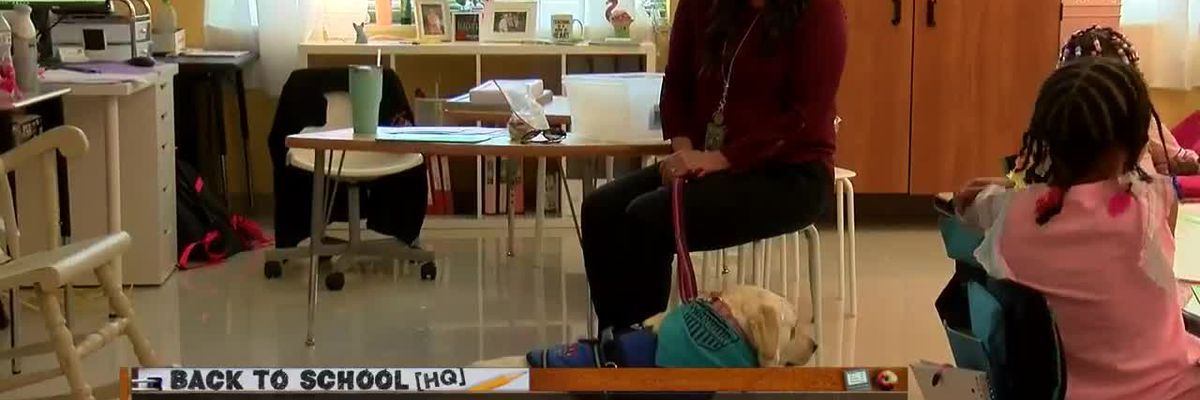 New therapy dog starts school