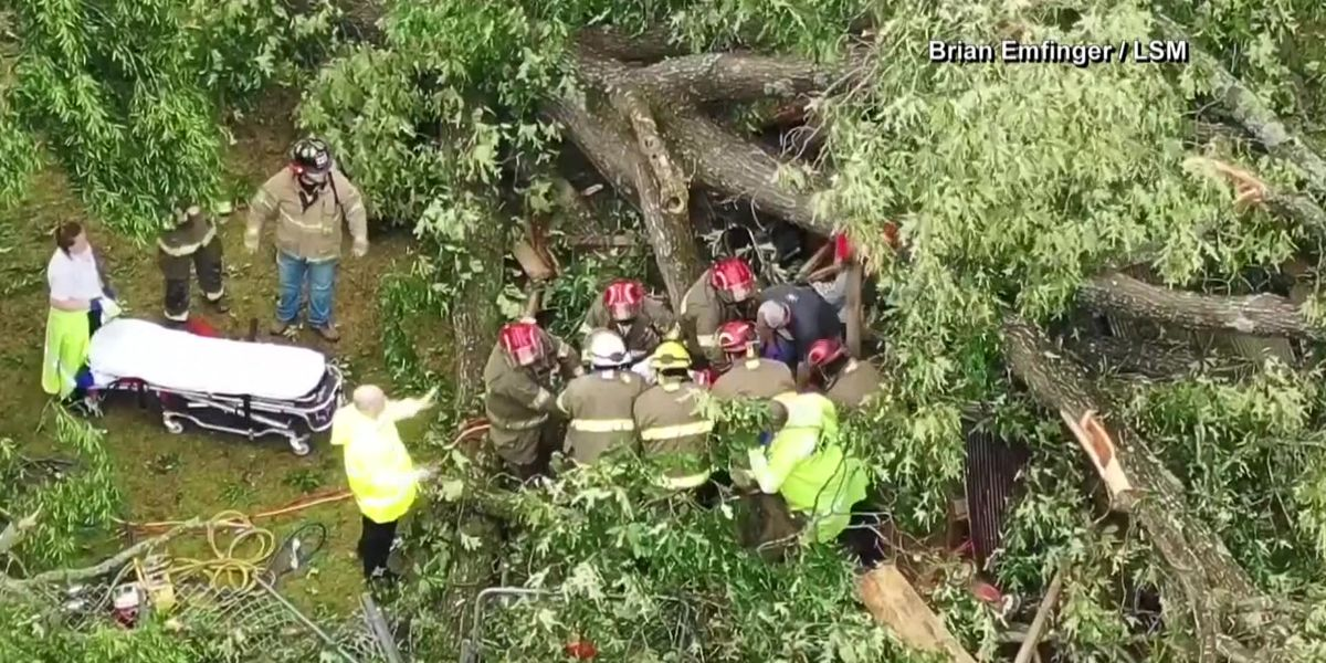 Ark. woman rescued from under pile of trees after storms