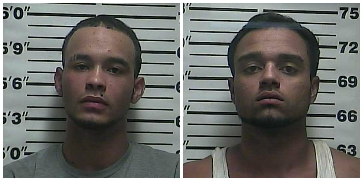2 arrested, accused of trying to steal hemp from TN farm