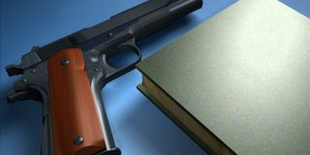 School staff member on leave for reportedly having gun on school property
