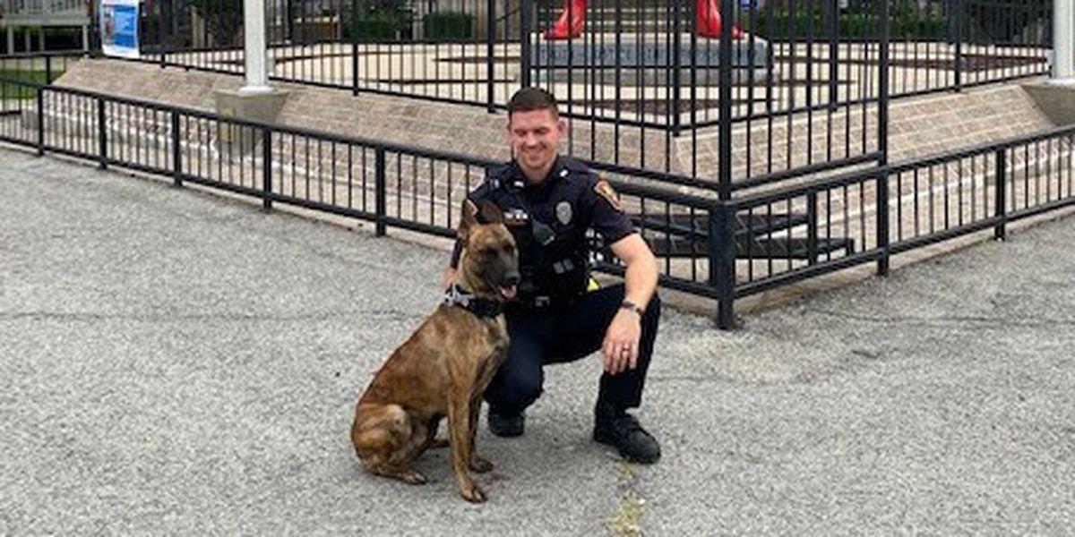Metropolis Police Department welcomes new K-9