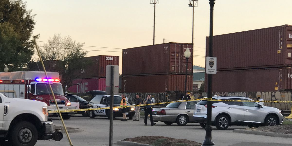 Carbondale police ID pedestrian hit, killed by train