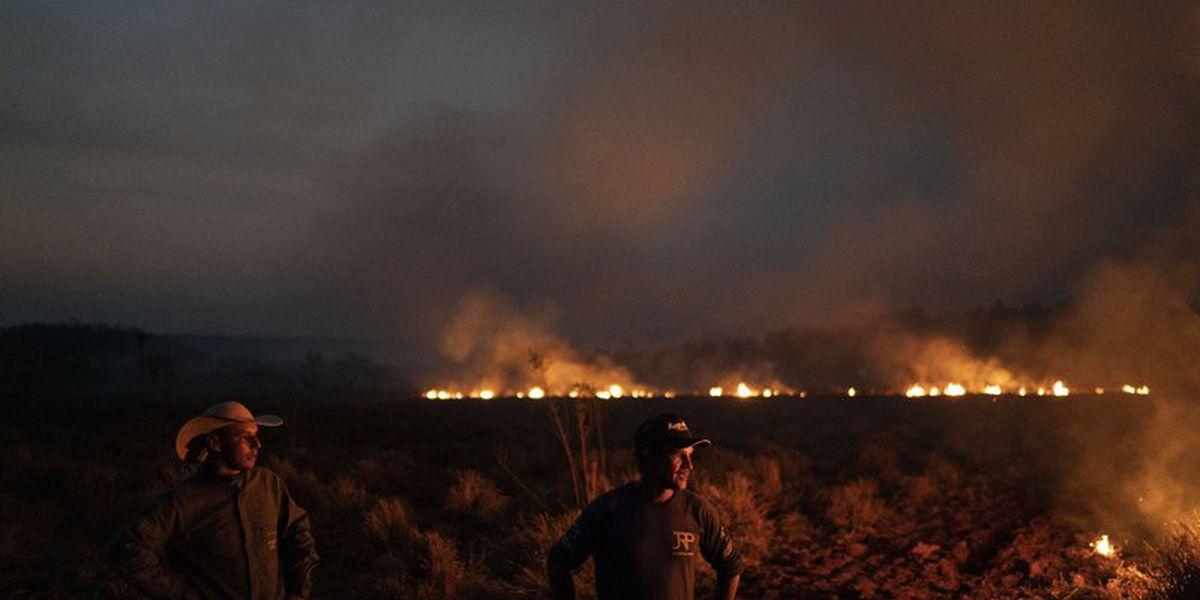 Leonardo DiCaprio's new environmental fund pledges $5 million in aid amid Amazon fires