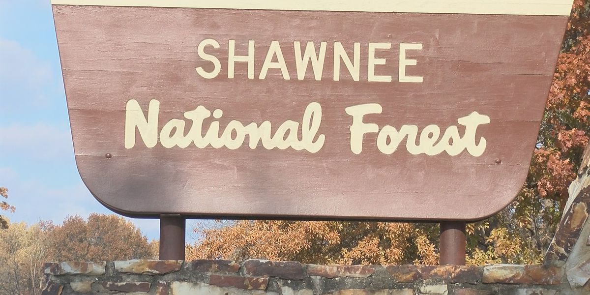 Shawnee National Forest teams up with SIU Museum for 80th anniversary celebration