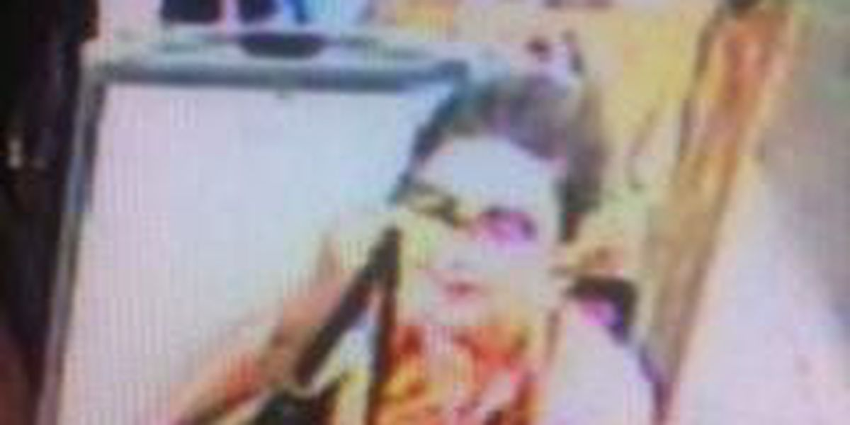 Police look for suspected purse snatcher