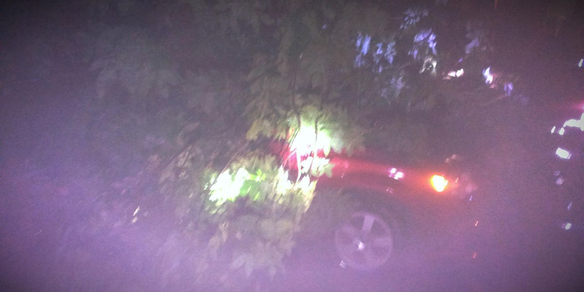 Fire crews respond to storm damage in Hamilton County