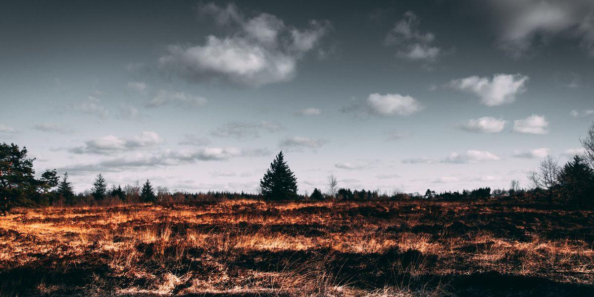 Burn bans, advisories in the Heartland